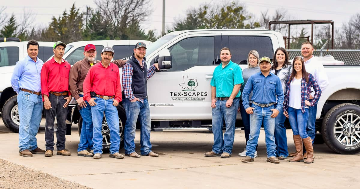 Tex-Scapes Team 3