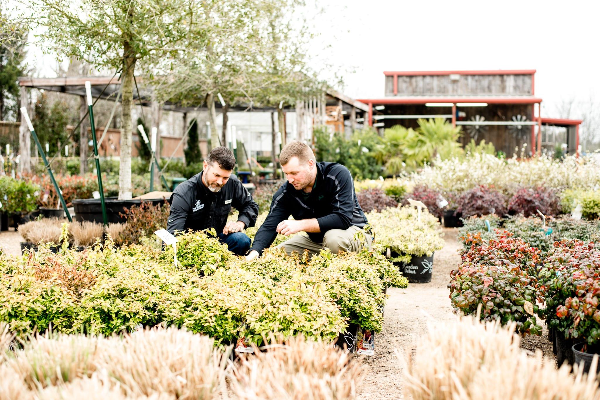 corsicana-texas-professional-landscaping-service